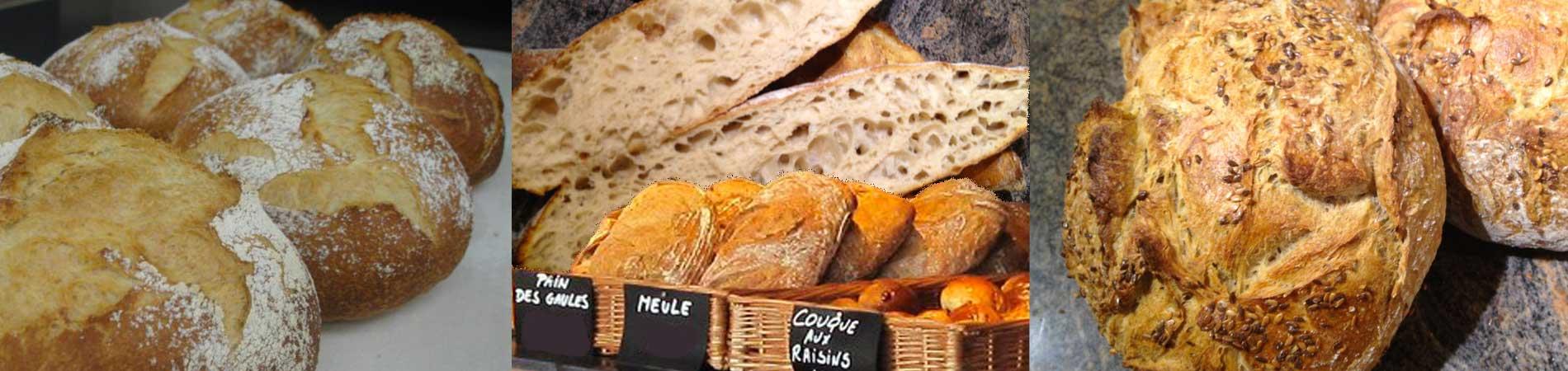 Culture Pains le pain artisanal réinventé